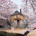 10 edificios minimalistas inspirados en la ceremonia del té