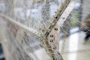 Silk Pavilion: la estructura que los gusanos recubrieron con seda