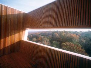 El punto más alto de la Casa Keenan es una terraza al aire libre para disfrutar del dosel a 50 pies (15 metros) de altura